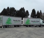 Pacific Pine Industries Ltd
